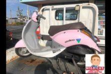 写真:浜松市南区若林 バイク無料回収 2台まとめて
