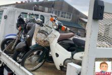 写真:浜松市西区西山 バイク廃車 スーパーカブ(C50)無料廃車